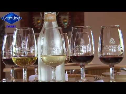 Hunter Valley Food And Wine Experience With Gray Line Tours Sydney