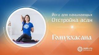 Йога для начинающих: отстройка асан (гомукхасана)