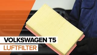 Reparere VW AMEO selv - bil videoguide