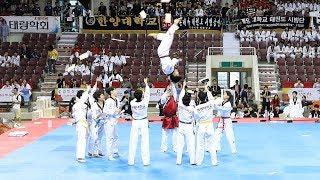 170731 계명대학교 태권도 팀대항 종합경연 예선 (Taekwondo Team Competition) [세계태권도한마당] 4K 직캠 by 비몽