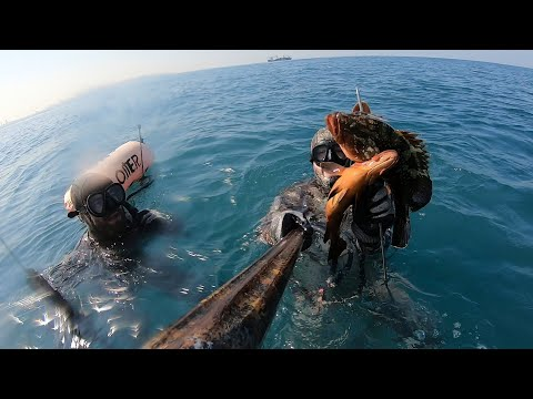Best Spearfishing Moments