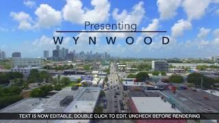 Presenting... Wynwood, Miami