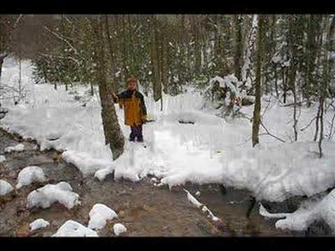 Winter Wonderland Snow Pictures 1