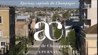 Les touristes et Epernay