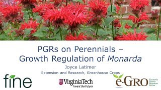 PGRs on Perennials Growth Regulation of Monarda