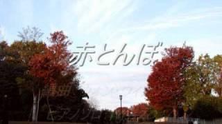 赤とんぼ / しゃぼん玉_童謡_ピアノソロ.wmv