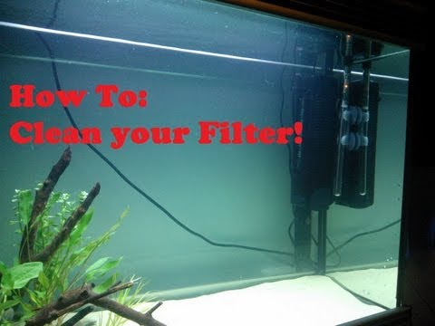 How To: EASILY clean an Aquarium Filter!