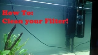 how to easily clean an aquarium filter