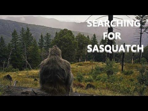 Searching For Sasquatch #1 - Molalla River Bigfoot Investigation. BFRO Report #9391