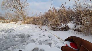 Обокрали прямо на глазах Зимняя рыбалка на безмотылку