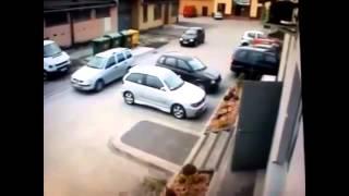 смотреть самые смешные видео приколы онлайн,курица паркуется видео