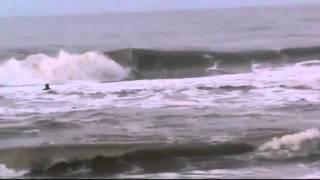 Baixar LUIZ GUILHERME OLIVEIRA PUGA SURF SHOP ... PGUA.