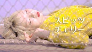 【MV】チェリー/スピッツ (Covered by あさぎーにょ) thumbnail