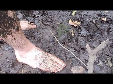 Barefoot Mudding Live Stream