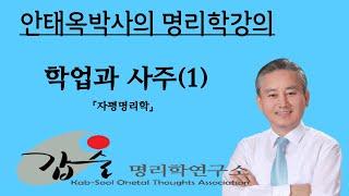 학업과사주-(자평명리학)-갑술명리학-안태옥 박사의 인문사회학강의