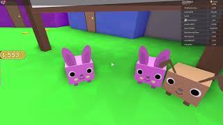 Danois ROBLOX Pet Simulator nous gagnons Lebara