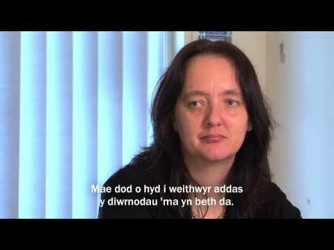 Ewrop a Gogledd Cymru -- Taith i Waith / Europe & North Wales -- New Work Connections