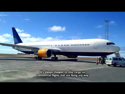 Icelandair Cargo daily operations