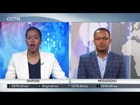 Somalia Government Resignations: Country's defense minister and army chief quit