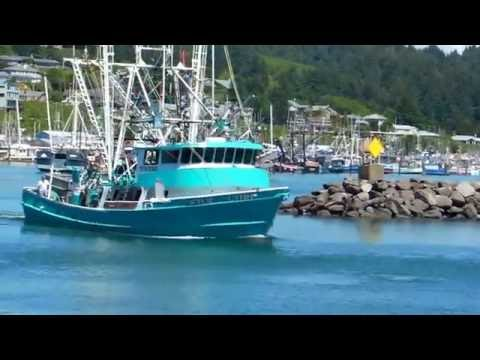 Harbor in Yaquina Bay, Newport, Oregon !