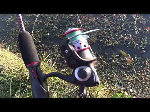 Ugly Stik GX2 Review