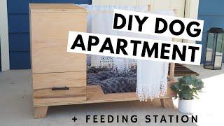 DIY MODERN DOG BED + bonus feeding station & storage