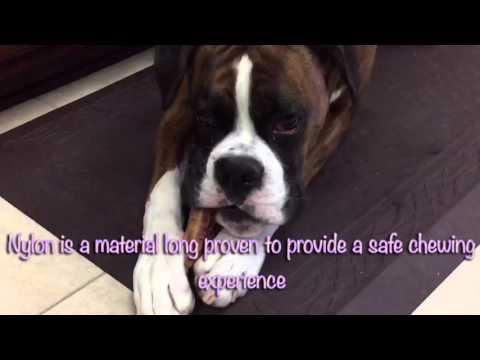 pet-qwerks-nylon-antler-dog-chew-toy