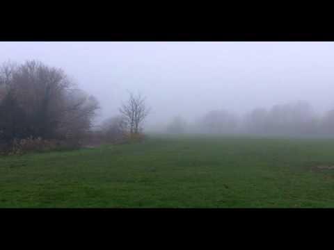 Fog in Stamford