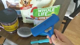 Как живут собаки в США (на примере Чемпа)