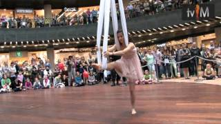 Ocelot pokazy akrobatyczne w Cuprum Arena