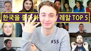 외국인들이 한국을 좋아하는 이유 레알 TOP 5!! (055/365)