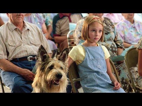10 лучших фильмов про собак