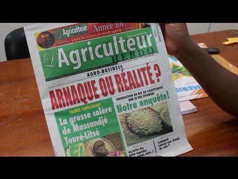 Agro Business: 40.000 souscripteurs se font arnaquer en Côte d'Ivoire