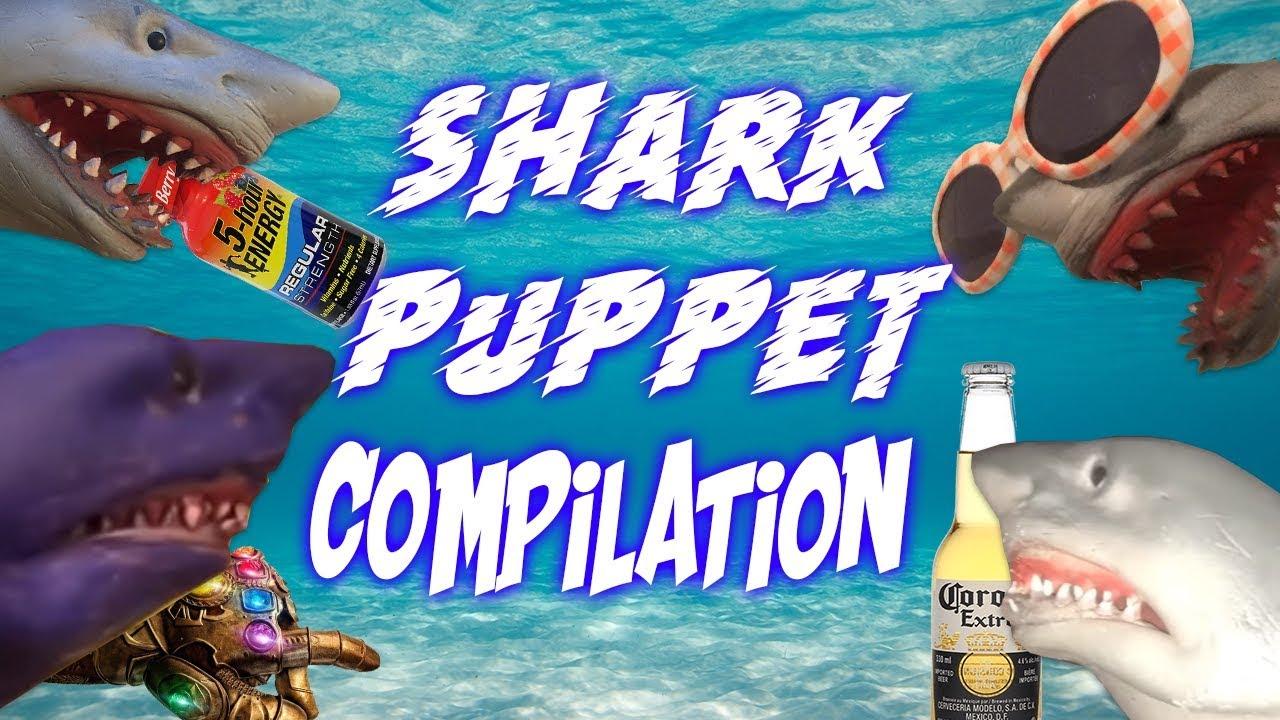 Download SHARK PUPPET COMPILATION 2