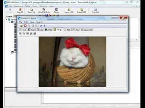 Batch import PostgreSQL BYTEA (BLOB) data from files