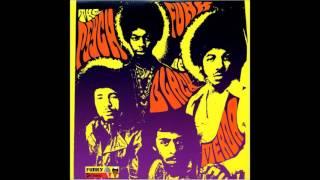 Black Merda - The Psych Funk of Black Merda [Full album]