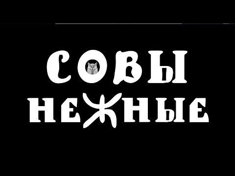 Полнометражный мультфильм про сов