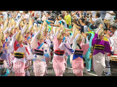 阿波おどりファン必見!2019年最初の総踊り!本場徳島阿波おどり_紺屋町演舞場_20190812  Awaodori in Tokushima Japan