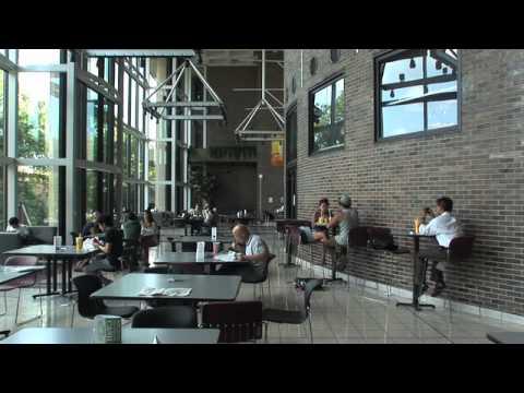 UIC Tutorium In Intensive English Video