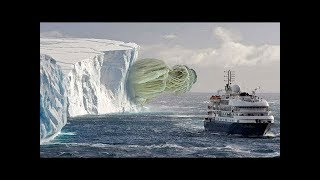 Download 10 Most Incredible Things Found in Antarctica Mp3 and Videos