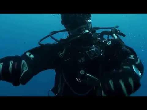 We are happy Sub (Pharrell)- Oloturia Sub diving Messina