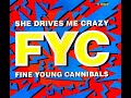 Thumbnail for Fine Young Cannibals - She Drives Me Crazy - REMASTERED