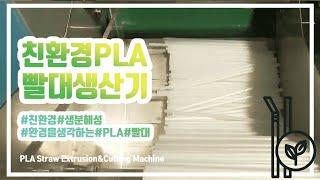 친환경 PLA 빨대 생산 설비 (PLA straw Ex…