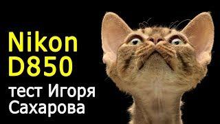 Игорь Сахаров. Nikon D850 в студийных условиях. Тест