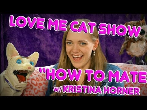 The Love Me Cat   How to Mate with Kristina Horner