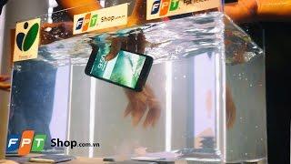 FPT Shop - iPhone 7 và iPhone 7+ có kháng nước ?