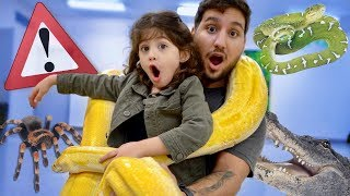 the-most-fearless-toddler-takes-care-of-dangerous-animals