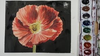 How to draw and paint a Poppy with watercolor  - BEGINNER TUTORIAL