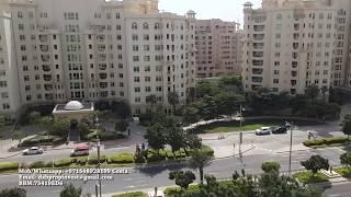 3 bedroom - for Rent - Shoreline Palm Jumeirah Dubai