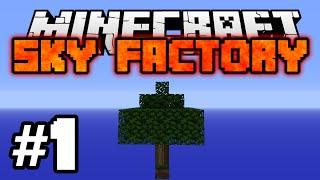 Minecraft: SKY FACTORY #1 - ZARAŽENO DRVO